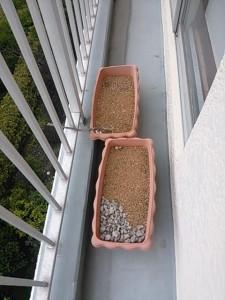 土処分 千葉県 浦安市 富岡 土回収 プランター処分 プランター回収 ベランダゴミ処分 ベランダゴミ回収 粗大ゴミ処分 粗大ゴミ回収