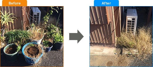 庭植木処分・観葉植物処分・土・プランター処分 Before,After 2